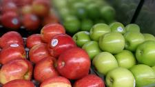 Bountiful Produce